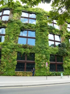Musée Quai Branly Living Wall