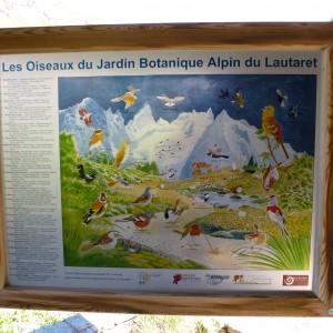 birds of the botanical garden