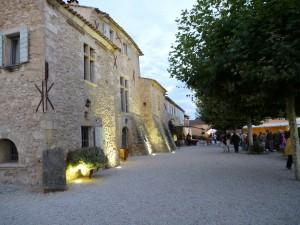 Chateau/Vineyard
